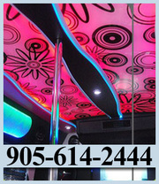Party Bus Kitchener