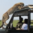 kenya tour packages
