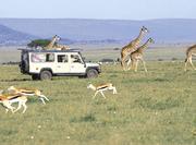 East Africa Adventure Safari Tour